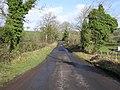 Loughmuck Road - geograph.org.uk - 1190467.jpg