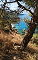 Lycian beauties.jpg