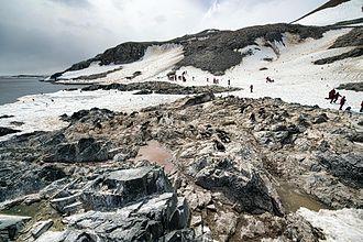 Madder Cliffs - Madder Cliffs, Joinville Island