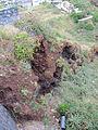 Madeira em Abril de 2011 IMG 2373 (5665426786).jpg