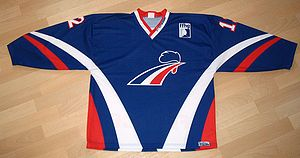 Hockey jersey - Front of the France national ice hockey sweater