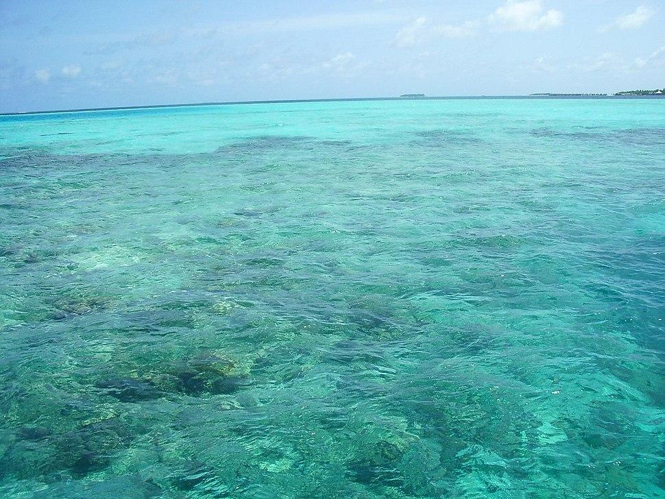 Maldives-reefs