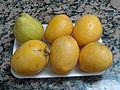 Mangos criollos y pera.JPG