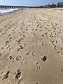 Manhattan Beach, California 17 2018-05-20.jpg