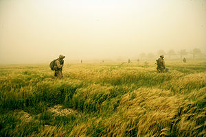 24th Marine Regiment (United States) - Marines from the 24th Marine Regiment search a field for weapons caches during a dust storm in Khalidiyah, Iraq on 17 April 2008