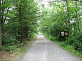 Mass Central Rail Trail, Sterling MA.jpg
