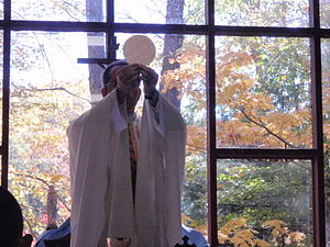 ECyD - A Legionary priest celebrating the Eucharist at an ECyD camp at Camp Otyokwah in Ohio.