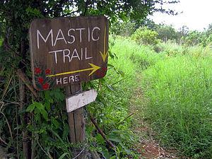 Mastic Reserve