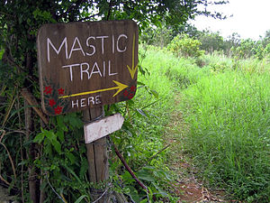 Mastic Reserve - Image: Mastic Trail, Grand Cayman (5193361753)