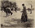 Max Liebermann Auf der Weide.jpg