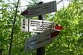 Miedzygorze, trails (4).JPG