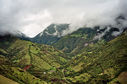 Mindo-Cloud-Forest-05.jpg