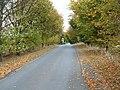 Minor Road Towards Skirlaugh - geograph.org.uk - 1527978.jpg