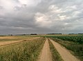 Minsk Region, Belarus - panoramio (33).jpg