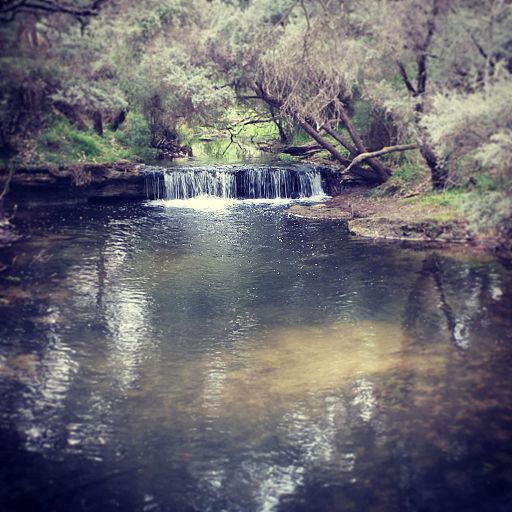 Mole Creek, Glenelg River