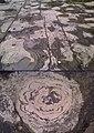 Montage Stormatolite.jpg