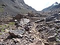 Morocco319-High Atlas-alpguide.jpg