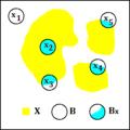 Morpho Math Connex 02.png