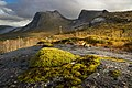 Mossy rocks in Efjorddalen, Narvik, Nordland, Norway, 2018 September.jpg