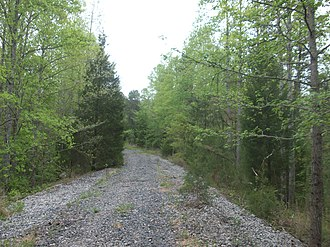 Triple C Rail Trail - A view of the Triple C Rail Trail near Kings Creek, South Carolina. The track was removed from this section around 2007.