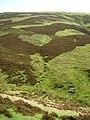 Mottled Hillside Below East Mount Lowther - geograph.org.uk - 179517.jpg