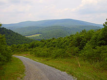 Mountain road 5.jpg