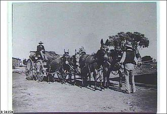 Mount Eba Station - Mules cart, Mt. Eba ca.1880