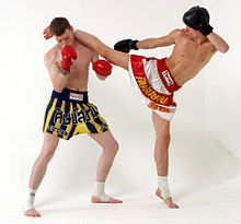 Muay Thai Book.jpg