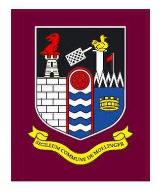 County Westmeath - Image: Mullingar logo