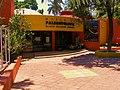 Museo de Paleontologia. Eliseo Palacios. - panoramio (1).jpg