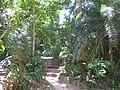 Museu Paraense Emílio Goeldi, jardim.jpg