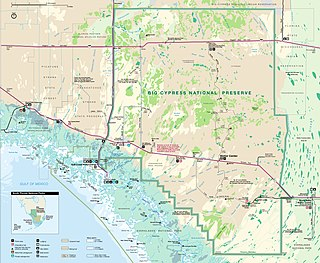 Big Cypress National Preserve Over 729,000 acres in Florida (US) managed by the National Park Service