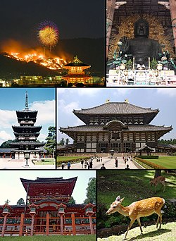 From top left: Wakakusayama Mountain Burning, Great Buddha of تودای‌جی، Yakushi-ji, Todai-ji, Kasuga Shrine and a deer in Nara Park