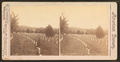 National Military Cemetery, Graves, Nashville, Tenn, by Webster & Albee.png