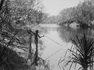 Herbert Basedow - Two men spear-fishing, billabong of the East Alligator River, Arnhem Land, Northern Territory, 1928. Photographer: Herbert Basedow. National Museum of Australia collection.