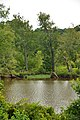 Neuse River - panoramio.jpg