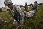 New Jersey National Guard and Marines perform joint training 150618-Z-AL508-024.jpg