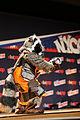 New York Comic Con 2014 - Rocket Raccoon (15336009788).jpg