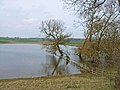 New lake at Bishop Middleham - geograph.org.uk - 155979.jpg