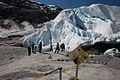 Nigardsbreen-Glacier6.jpg