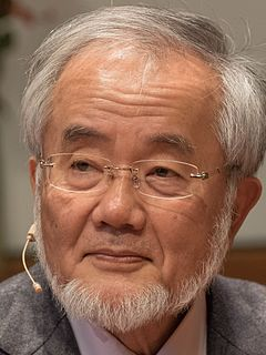 Yoshinori Ohsumi Japanese molecular biologist