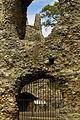 Odiham Castle detail.jpg