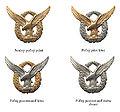 Odznaky vojakov vojnovej SR 1939-45 letecke odznaky.jpg