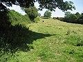 Offa's Dyke Path near Trefonen - geograph.org.uk - 913106.jpg