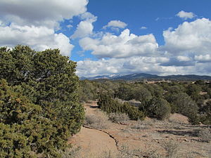 Pinyon-juniper woodland - In Santa Fe, New Mexico