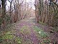 Old Railway Line, towards Longhope - geograph.org.uk - 143386.jpg