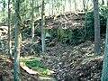 Old quarry - geograph.org.uk - 134011.jpg