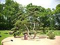 Orléans - parc floral (41).jpg