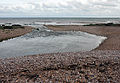 Otter Estuary 5.jpg