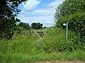 Overgrown Public Footpath - geograph.org.uk - 845814.jpg